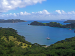 View from the top of a hill in the Bay of Islands